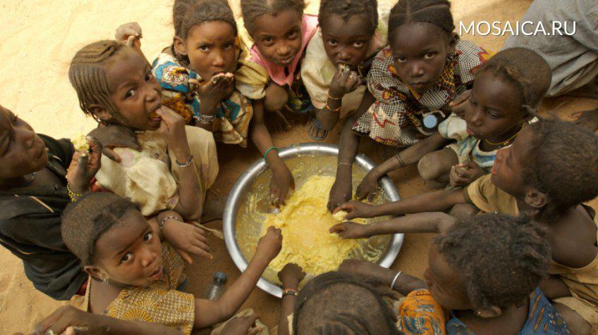 ООН: напротяжении 6-ти месяцев отголода могут умереть 20 млн человек