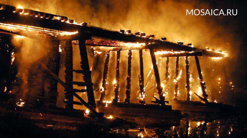 60 животных погибли впожаре вУльяновске