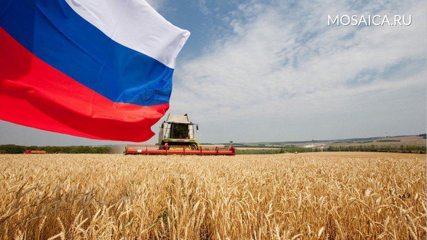 Минсельхоз: Российская Федерация  может лишиться статуса лидера поэкспорту пшеницы