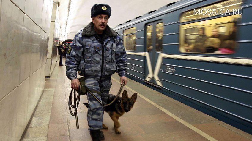 Д. Медведев утвердил требования пообеспечению транспортной безопасности