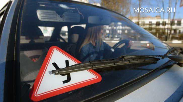 Минтранс поддержал инициативу автошкол реформировать программу обучения будущих водителей