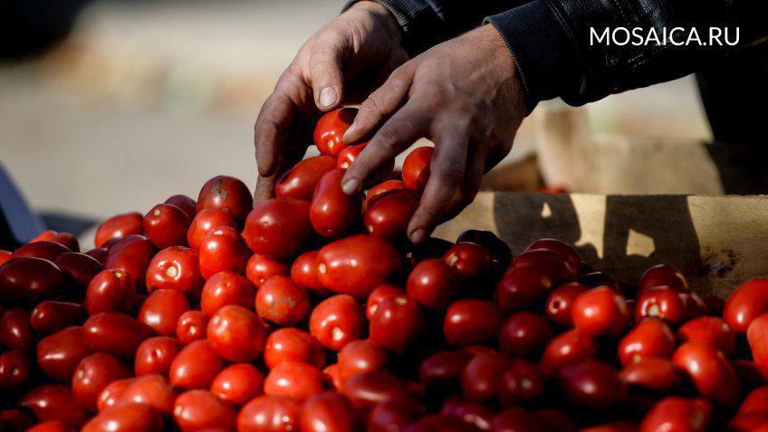 Опрос: неменее 50% граждан России поддерживают сохранение ограничений натурецкие продукты