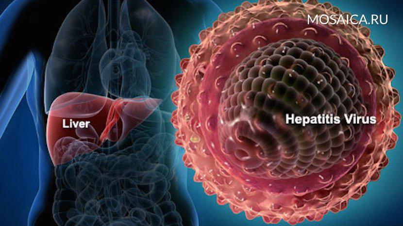 Вевропейских странах  прослеживается  вспышка гепатита А
