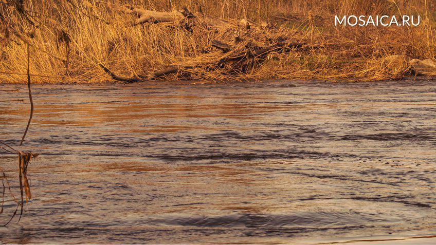 Вселе Озерки вУльяновской области утонула 13-летняя девочка
