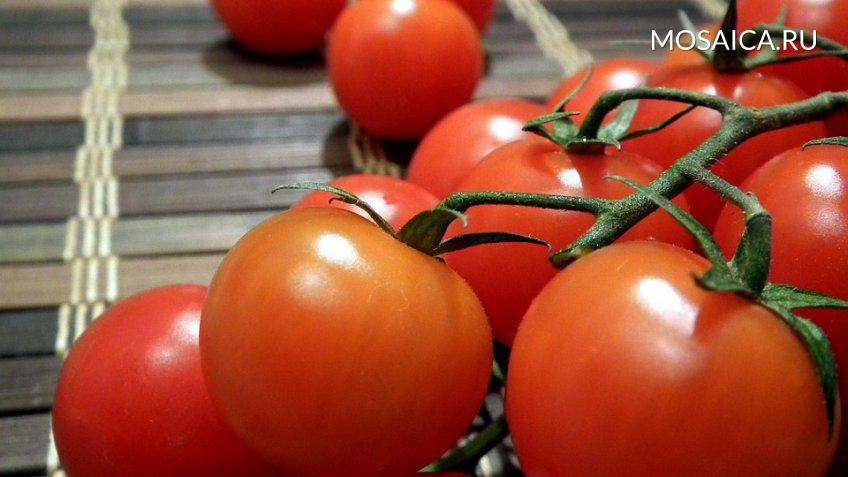 Турция может восстановить поставки томатов в Российскую Федерацию