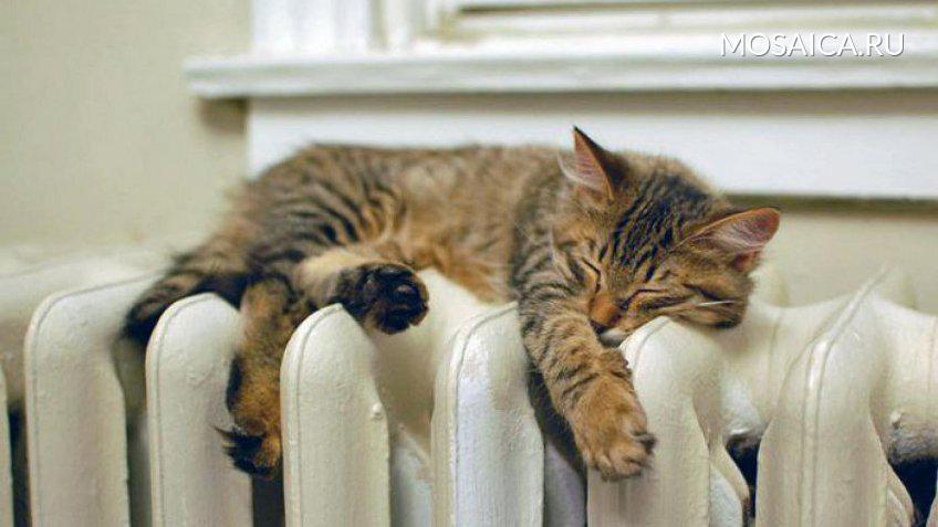 ВУльяновске начали подавать тепло вмногоквартирные дома