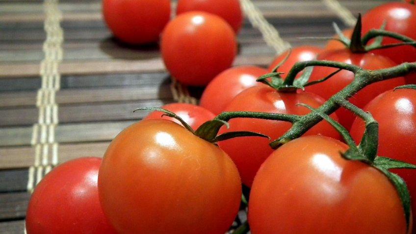 Турция: запрет наимпорт томатов в Российскую Федерацию будет снят вближайшие дни