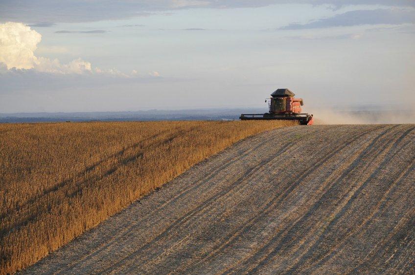 ВМосковской области собран рекордный урожай зерна