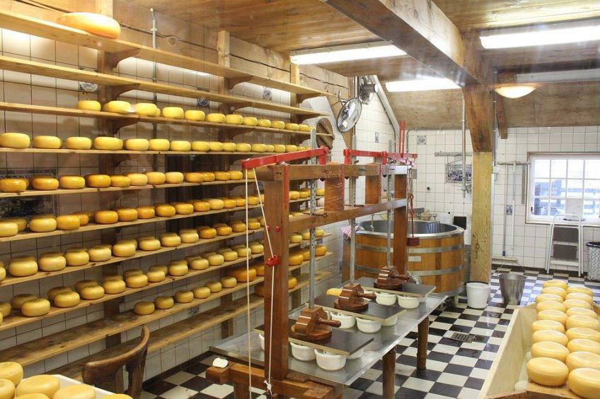 Магазин сыров Подмосковья появится наМКАД в2018 году