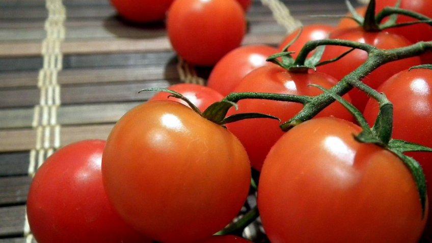 Специалисты поведали, как импорт турецких томатов повлияет нацены помидор вРФ