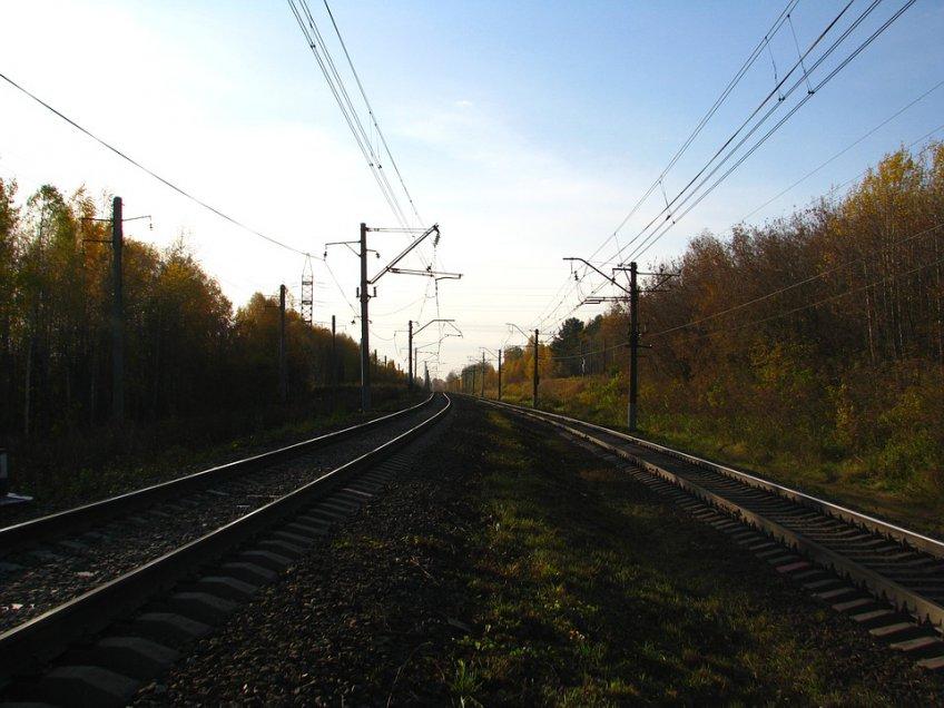4 электрички задерживаются наГорьковском направлении МЖД
