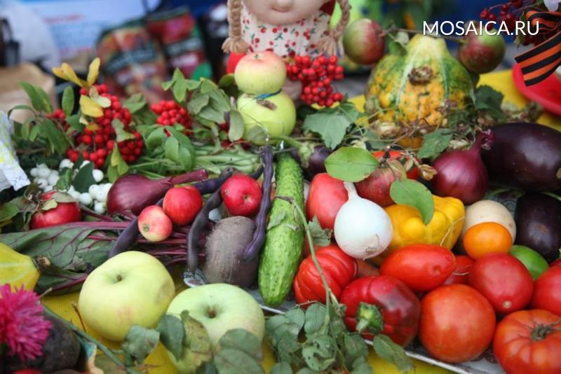 Ульяновцев приглашают нафестиваль овощных солений имаринадов