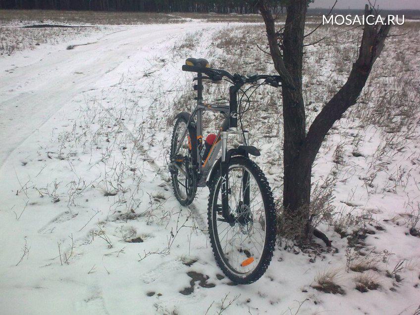 В столице России предполагается небольшой мороз