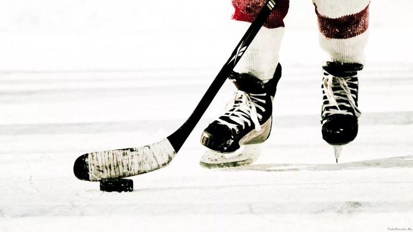 Хоккейные «разборки»: вСША спортсмен ударил клюшкой полицу конкурента
