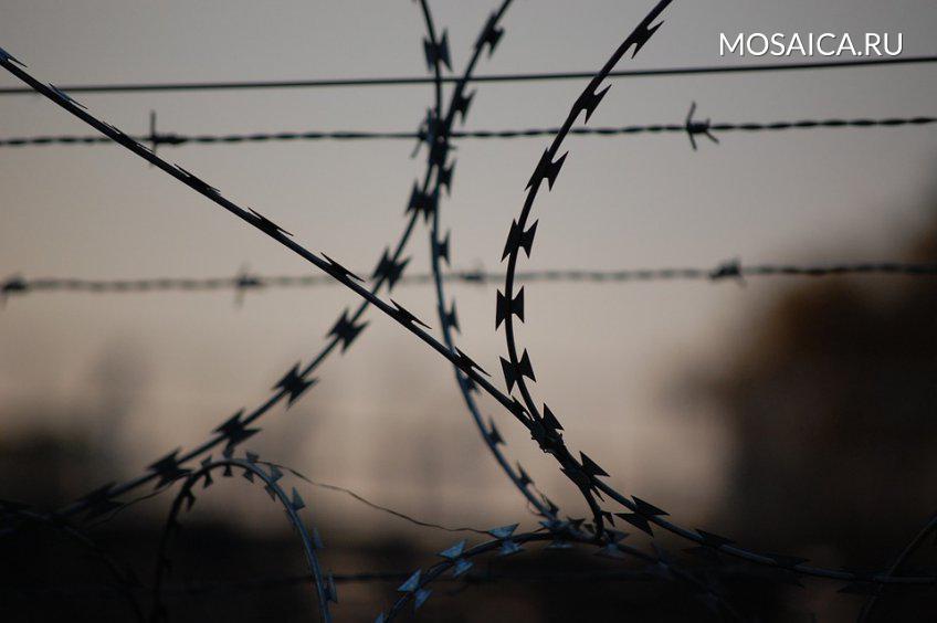 Омбудсмен: вульяновской колонии вскрыли себе вены 32 заключенных