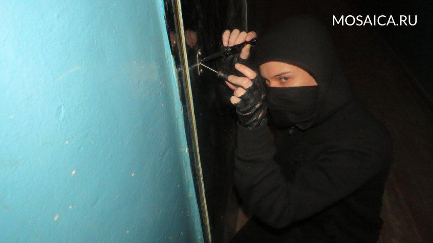 ВНовоульяновске 20-летняя девушка уговаривала молодых людей накражи